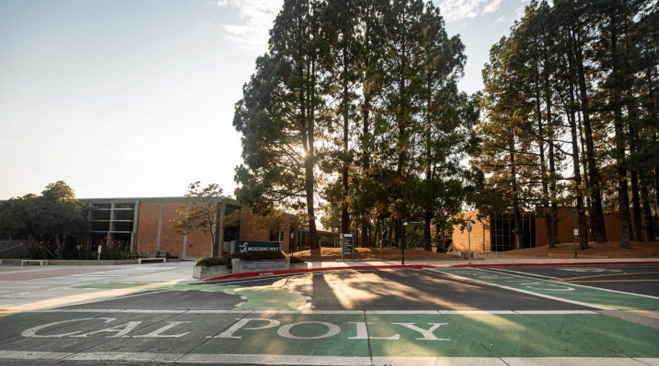 "Image of crosswalk with ""Cal Poly' written on the crosswalk"