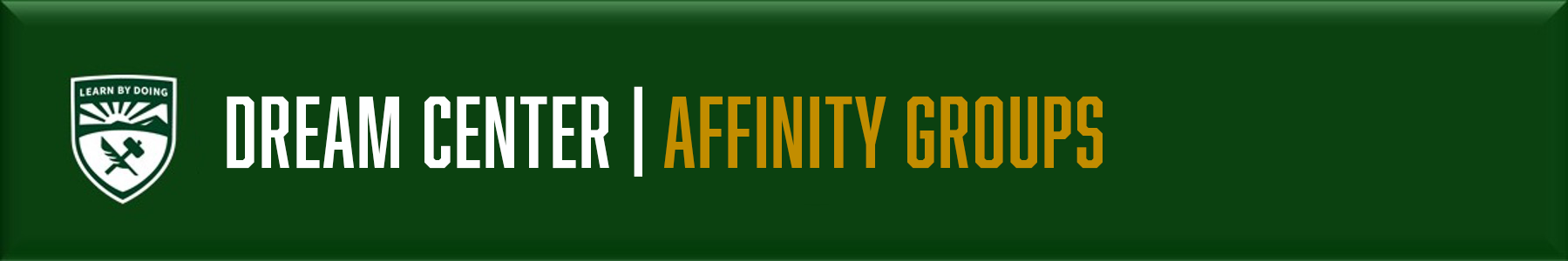 Affinity Groups