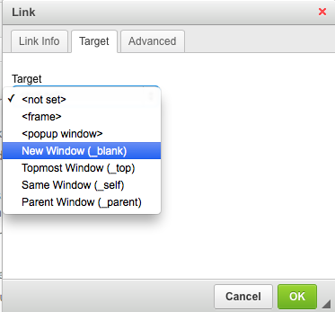 link dialog box for opening links in a new window