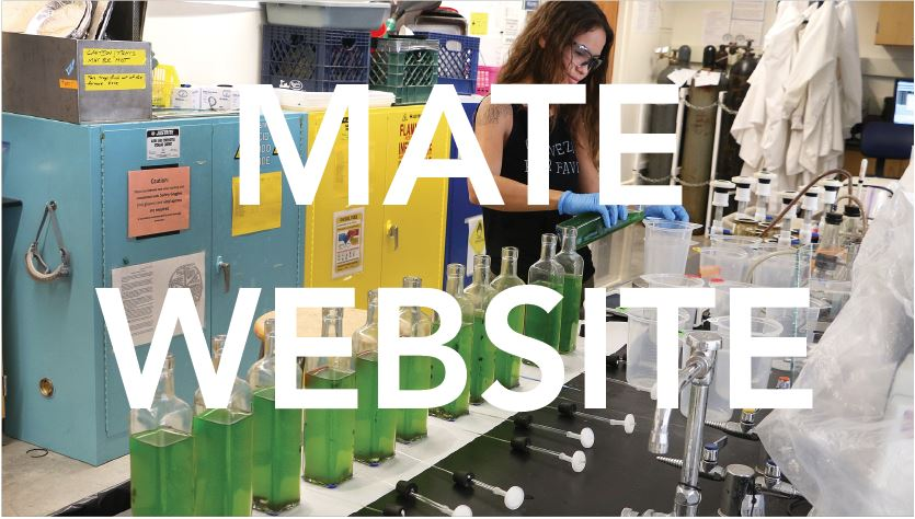 Materials Engineering Website
