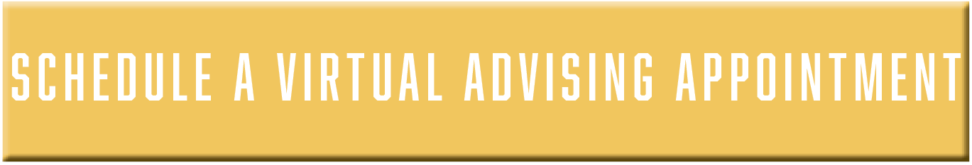 Schedule a Virtual Advising Appointment