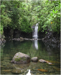 Picture of waterfall in Fiji