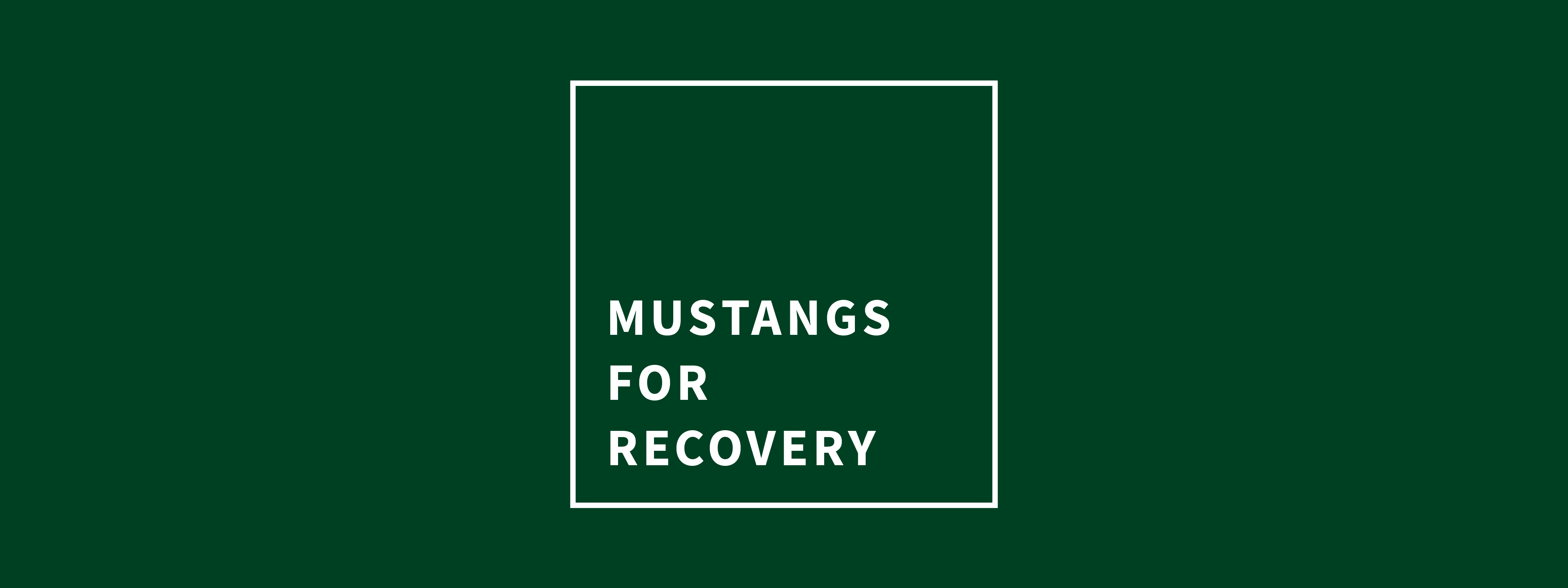 Mustangs for Recovery group name banner