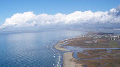 California Estuary
