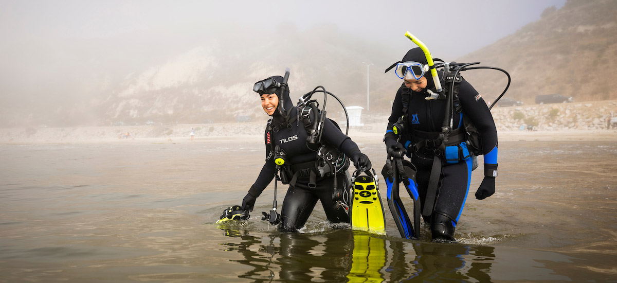 Stock image. Students enter scientific diving training environment.