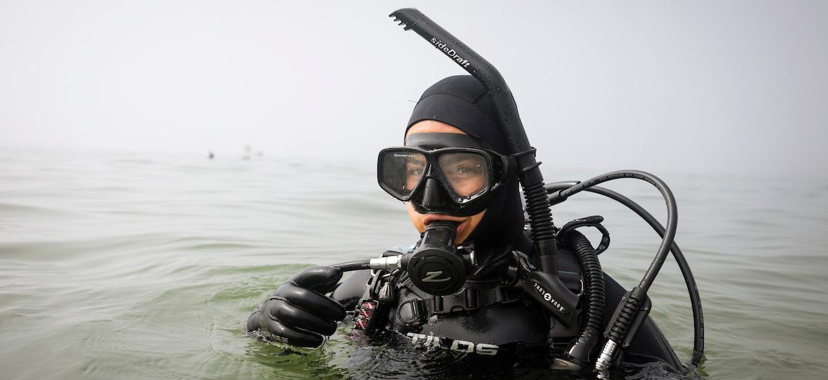 Stock image. Scientific diving.