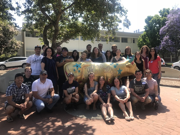 group of mathematicians around a cal poly cow
