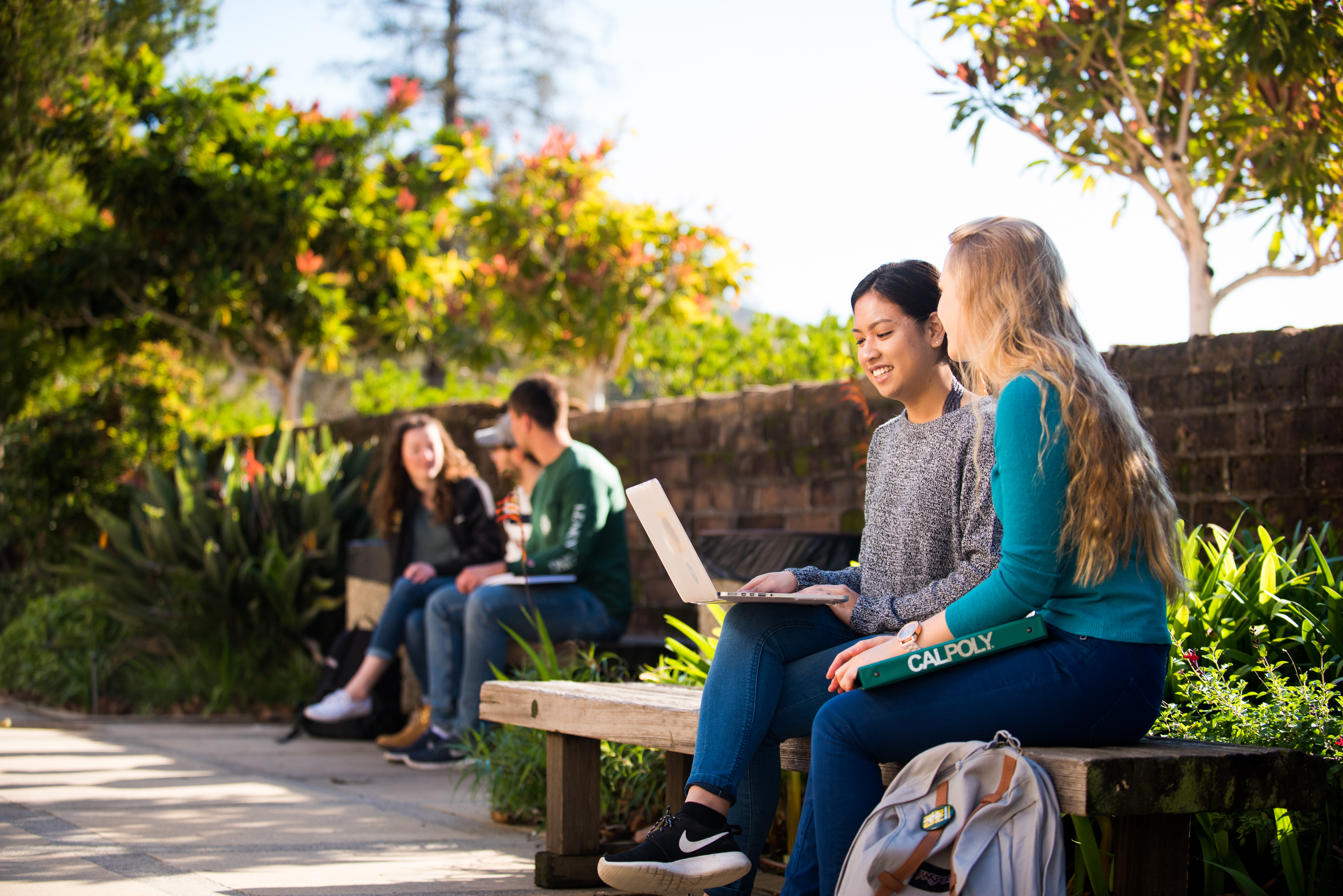 Two students sitting on bench outside talking