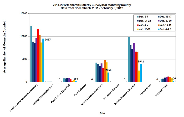 Graph of average number of monarchs counted in Monterey County from 12/6/2011 to 2/6/2011. Highest average found in Pacific Grove Monarch Sanctuary. Second highest average in private property, Big Sur.