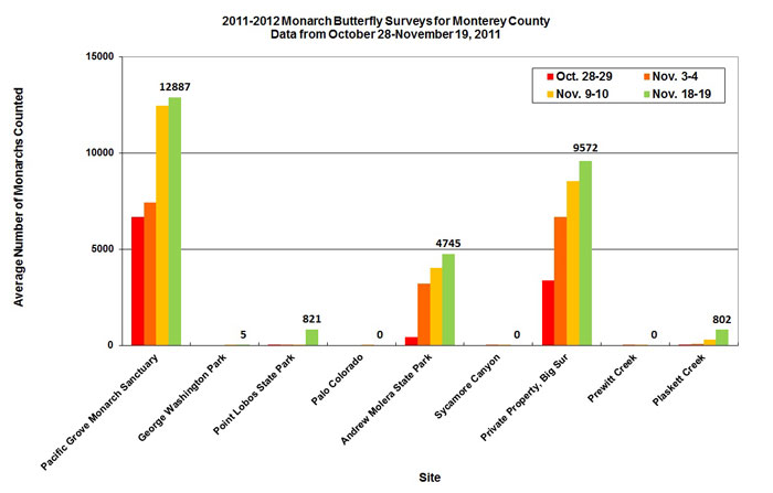 Graph for average number of monarchs counted in Monterey County from 10/28 to 11/19/2011. Highest average in Pacific Grove Monarch Sanctuary, second highest in private property, Big Sur.