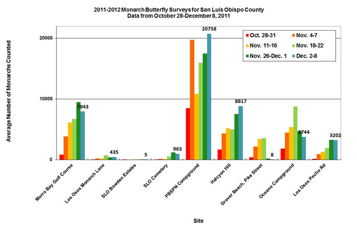 Graph of average number of monarchs counted in San Luis Obispo County from 10/28 to 12/8/2011. Highest average in PBSPN Campground, second highest in Halcyon Hill.