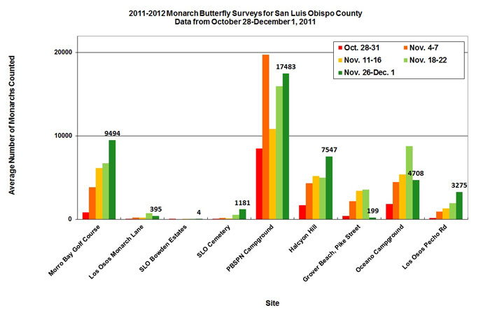 Graph of average number of monarchs counted in San Luis Obispo County from 10/28 to 12/1/2011. Highest average in PBSPN Campground, second highest in Morro Bay Golf Course.