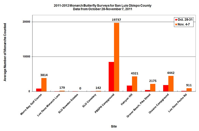 Graph of average number of monarchs counted in San Luis Obispo County from 10/28 to 11/7/2011. Highest average in PBSPN Campground, second highest in Oceano Campground.