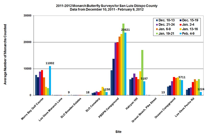 Graph of average number of monarchs counted in San Luis Obispo County from 12/10/2011 to 2/9/2012. Highest average in PBSPN Campground, second highest in Morro Bay Golf Course.