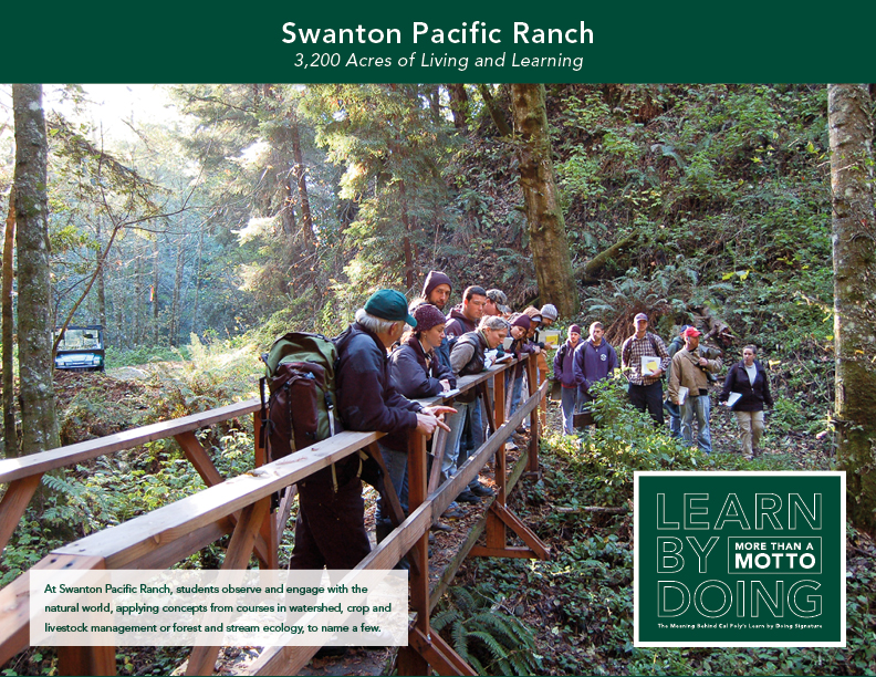 Swanton Pacific Ranch thumbnail