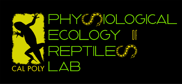 Physiological Ecology of Reptiles Lab