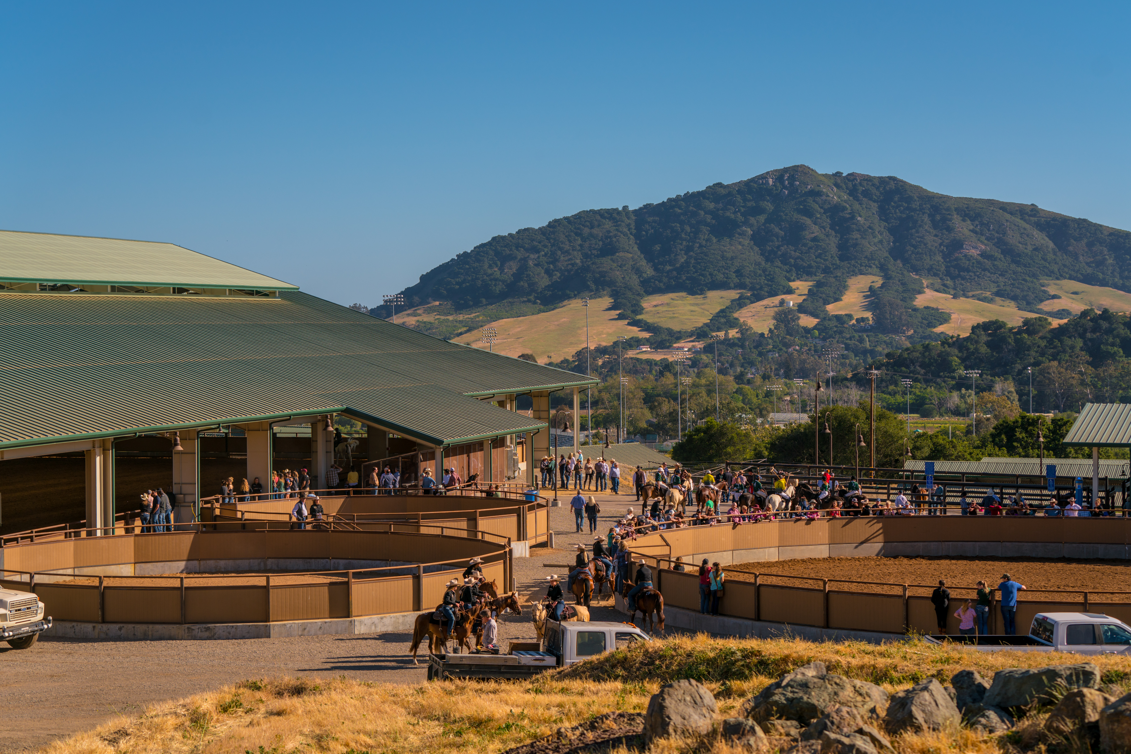 The Cal Poly Equine Center Performance Horse Sales Cal