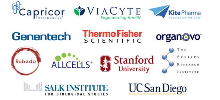Internship partner logos