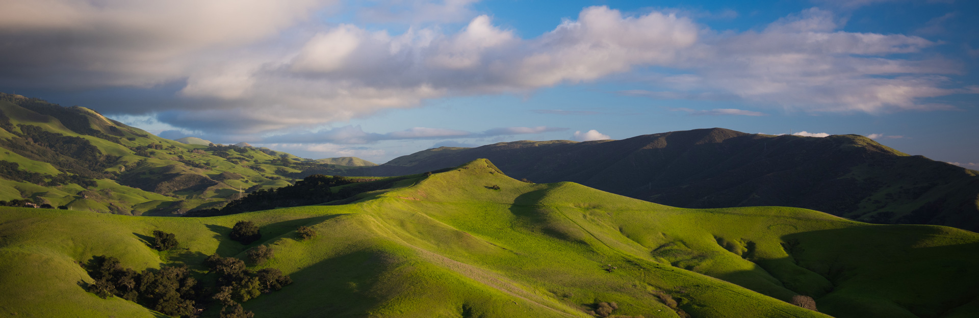Cal Poly hills