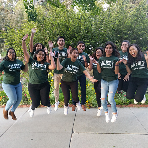 Group photo of Scholar Mentors jumping