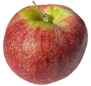 Red Gravenstein Apples
