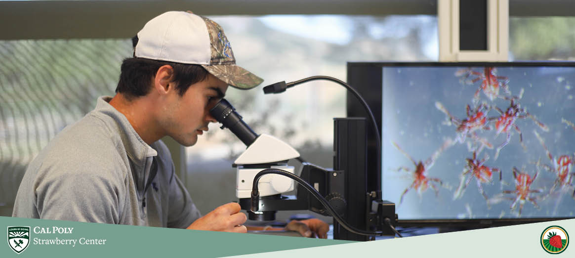 Gabe studies pest management on a microscope.