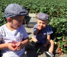 Children enjoying fresh berries Saturday