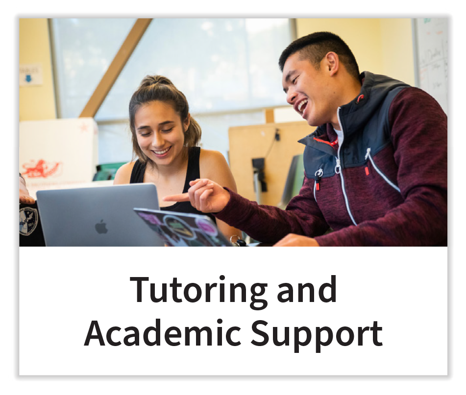 Tutoring and Academic Support Button