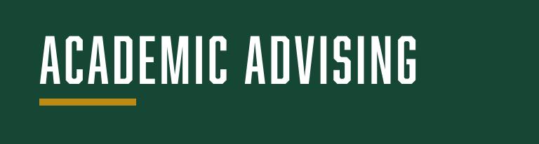 Academic Advising Topic Banner