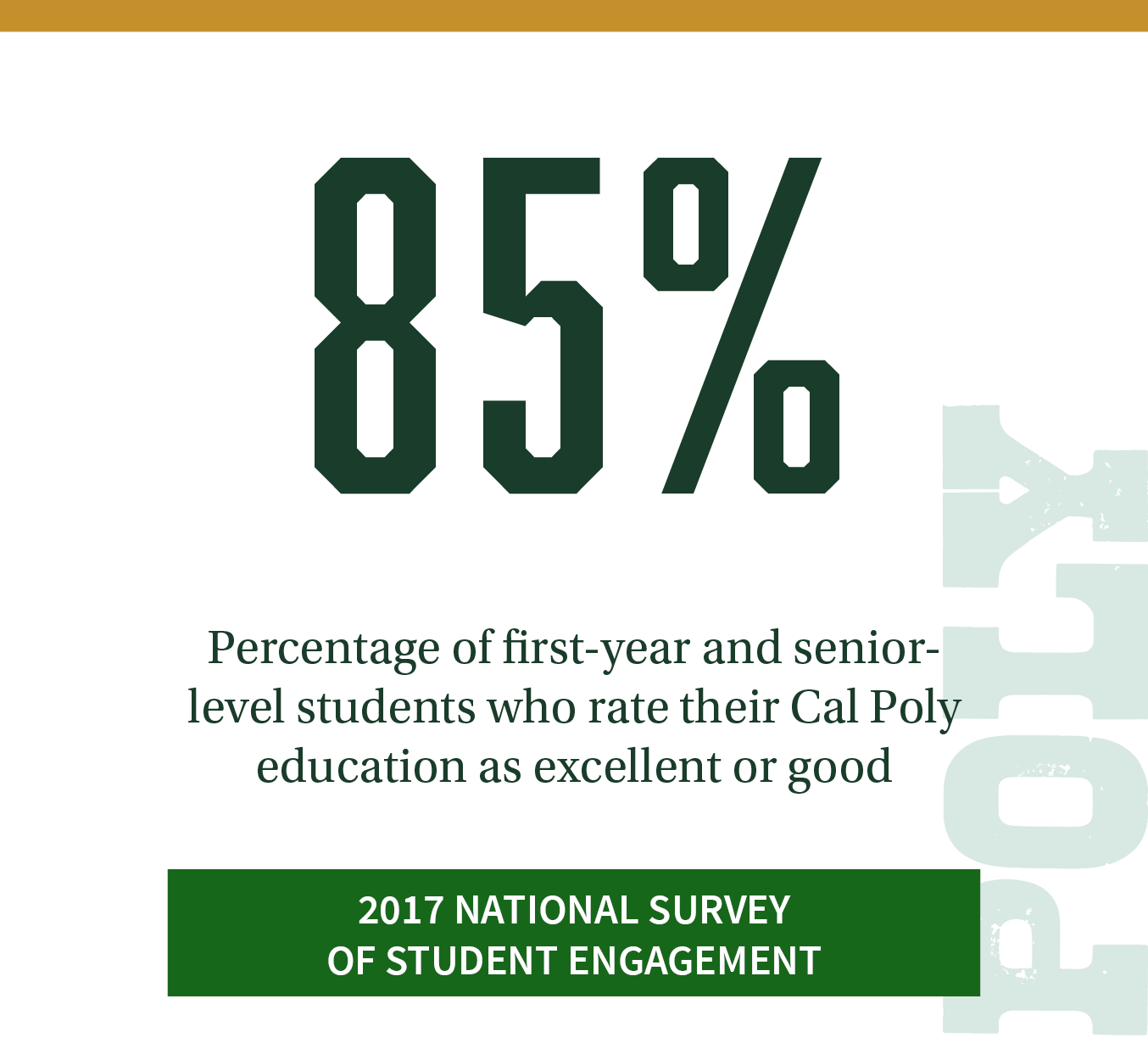 85%. Percentage of first-year and senior-level students who rate their Cal Poly education as excellent or good. Click to review more Cal Poly responses in the 2017 National Survey of Student Engagement.
