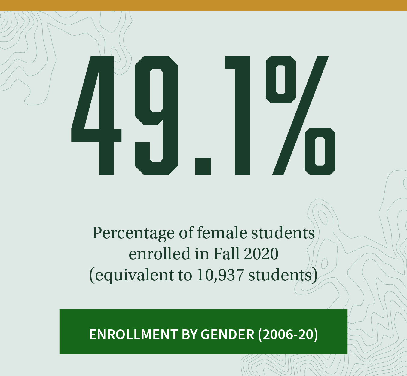 49.1%. Percentage of female students enrolled in Fall 2020 (equivalent to 10,937 students). Click to learn about Enrollment by Gender trends between 2006-20.