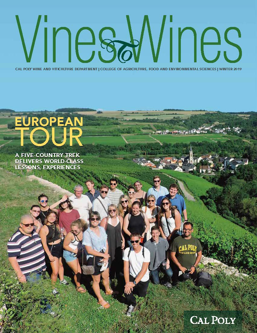 Cover of the 2019 Vines to Wines